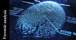 floirda, indian, dominican republic private investigator thumbprint